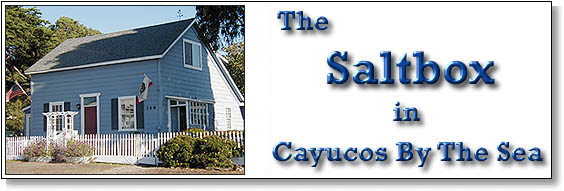 The Saltbox - Cayucos By The Sea